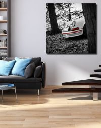 Photos Tableaux Porsche 911