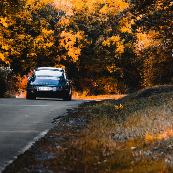 Photo Porsche 911 Autumn Tones