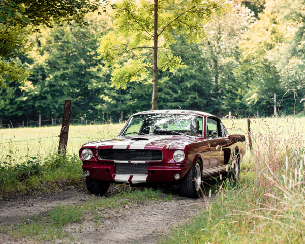 Photographie Shelby GT350