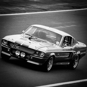 Photo Ford Shelby GT500