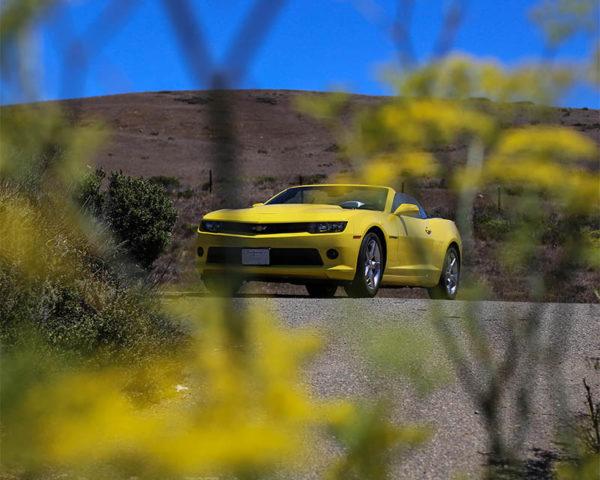 Tableau Toile Chevrolet Camaro