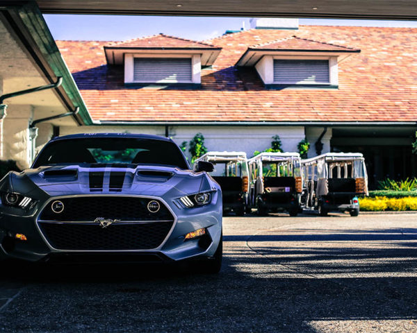 Photographie Murale Ford Mustang